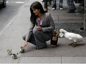 Don't you just hate pickpockets?